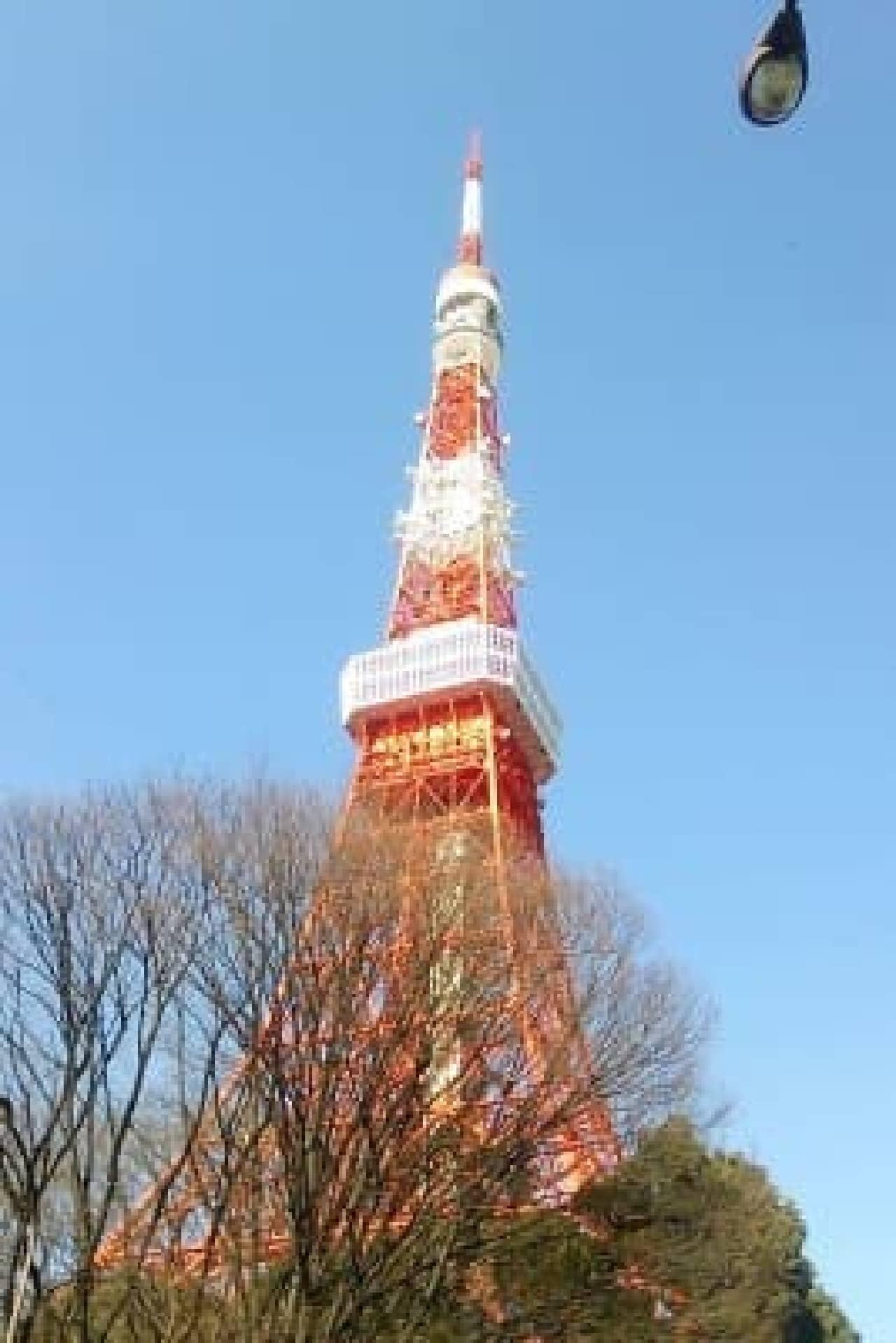 澄んだ青空と東京タワー。今日も頑張るぞ!
