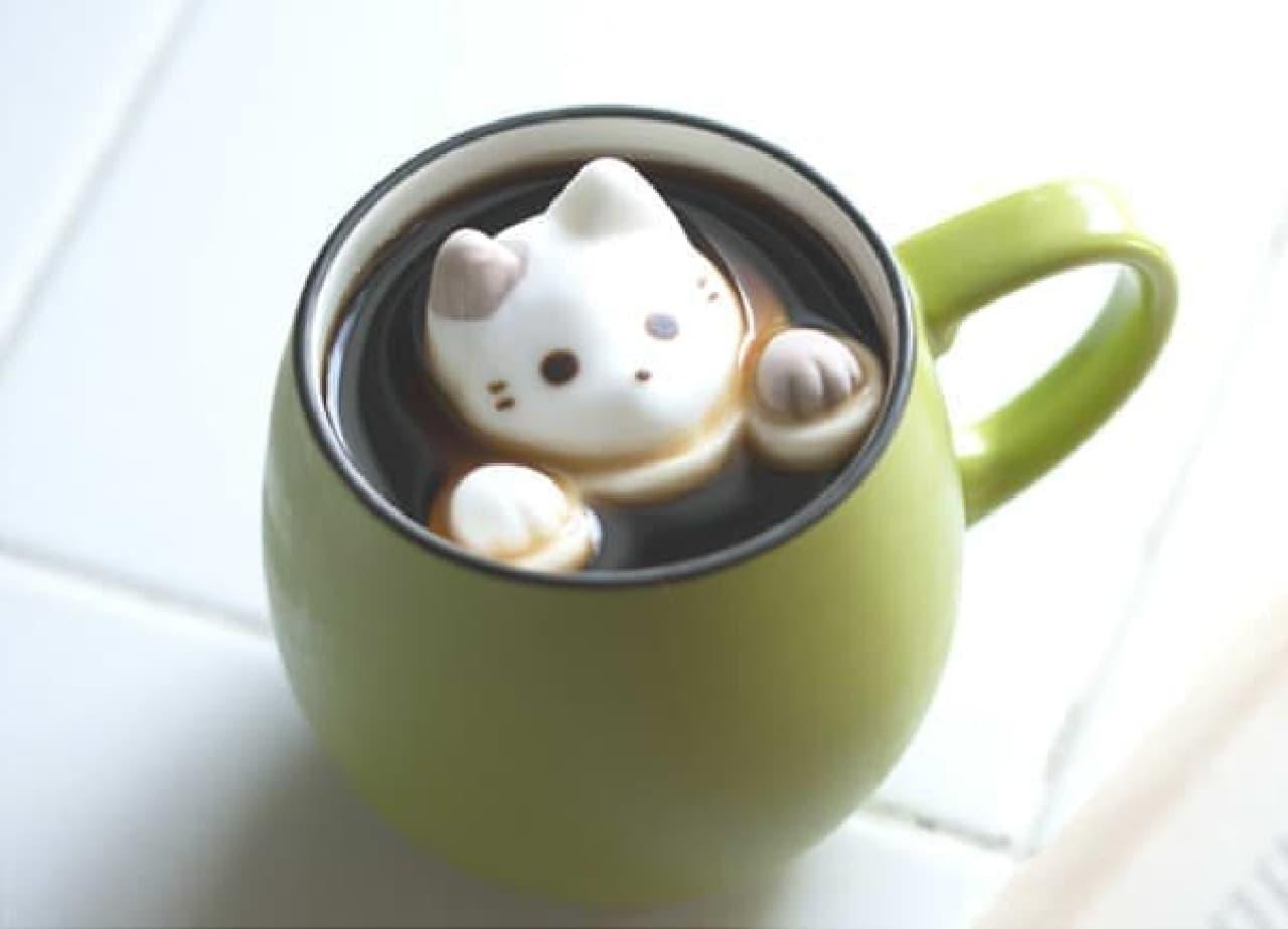 水面から顔をのぞかせる「cafe cat」