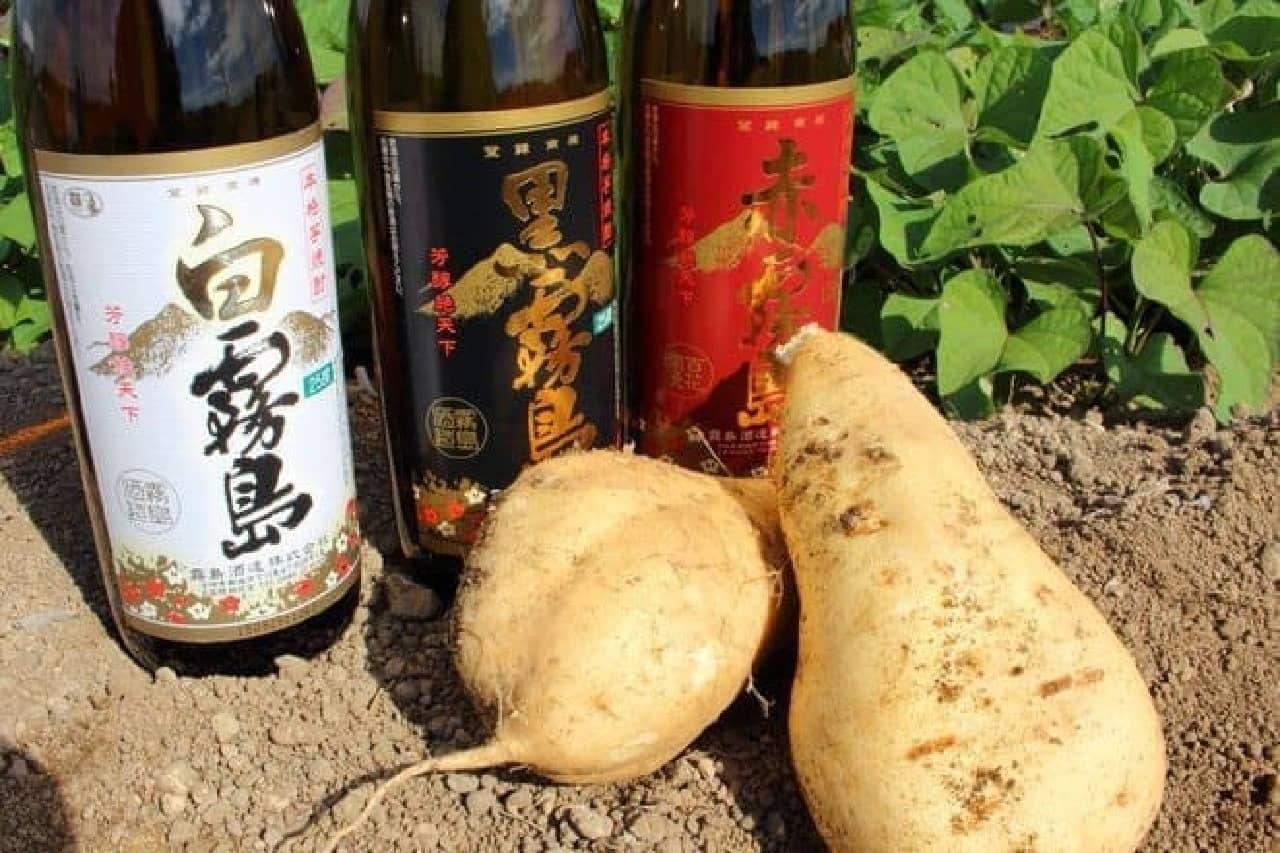 黒霧島を製造している「霧島酒造」に行ってみると…これ、サツマイモ?
