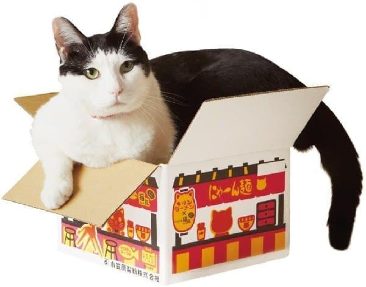 猫ちゃんは食べられません!