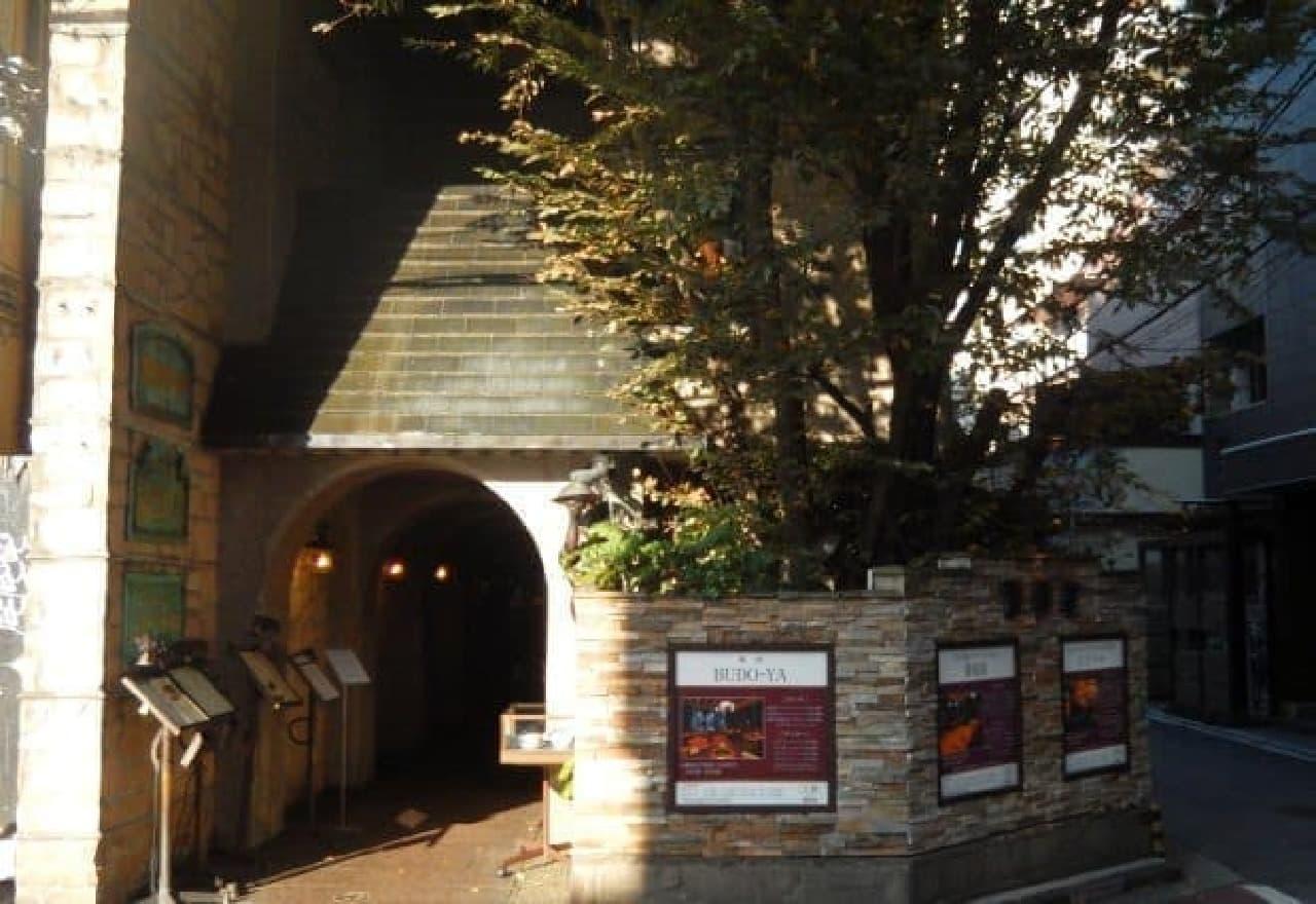 地下1階から3階まで、葡萄屋の異なる業態店舗が集結