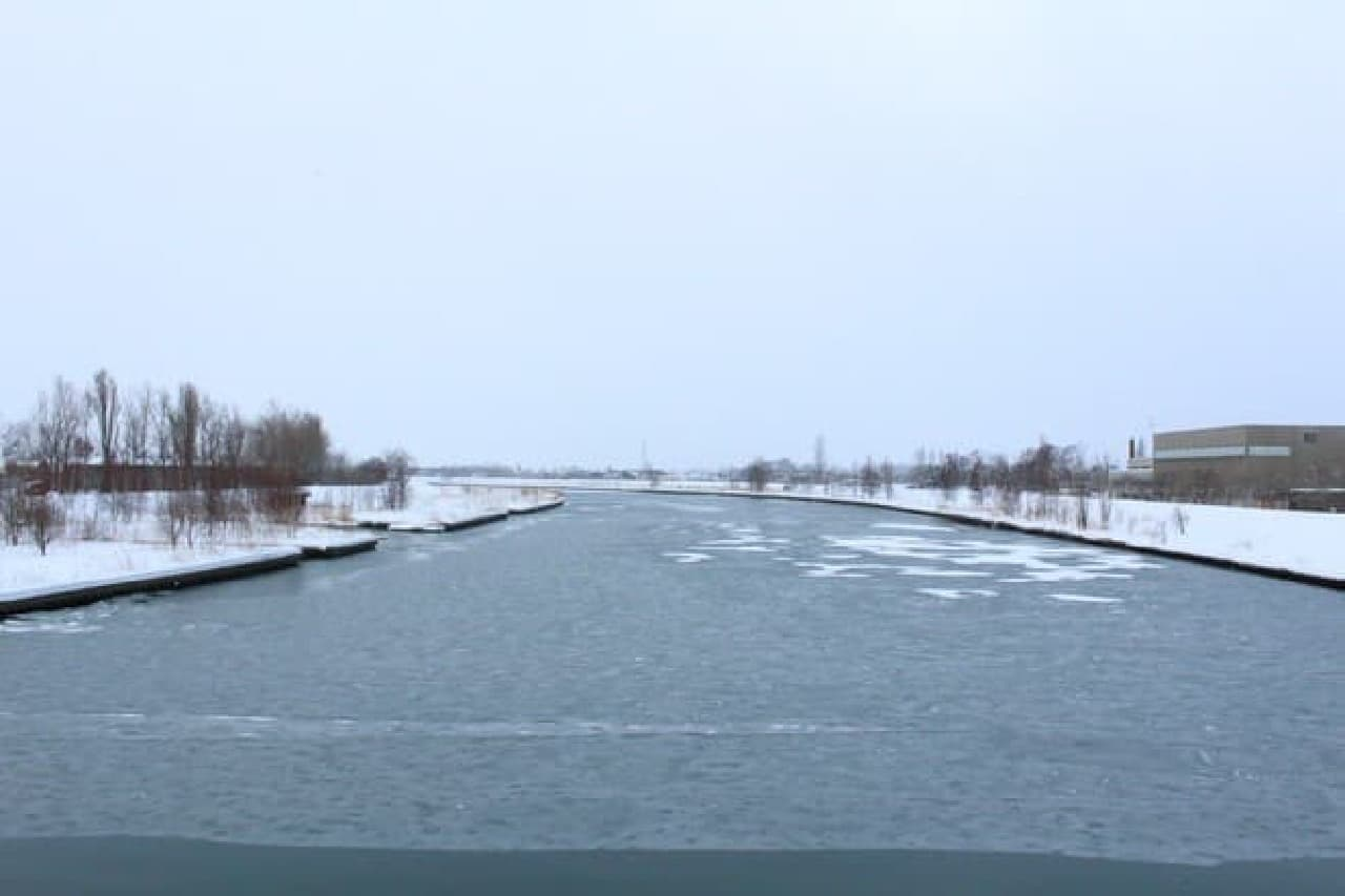 うっすら氷が張った余市川。  ちょうど天気も悪く、見るからに寒い
