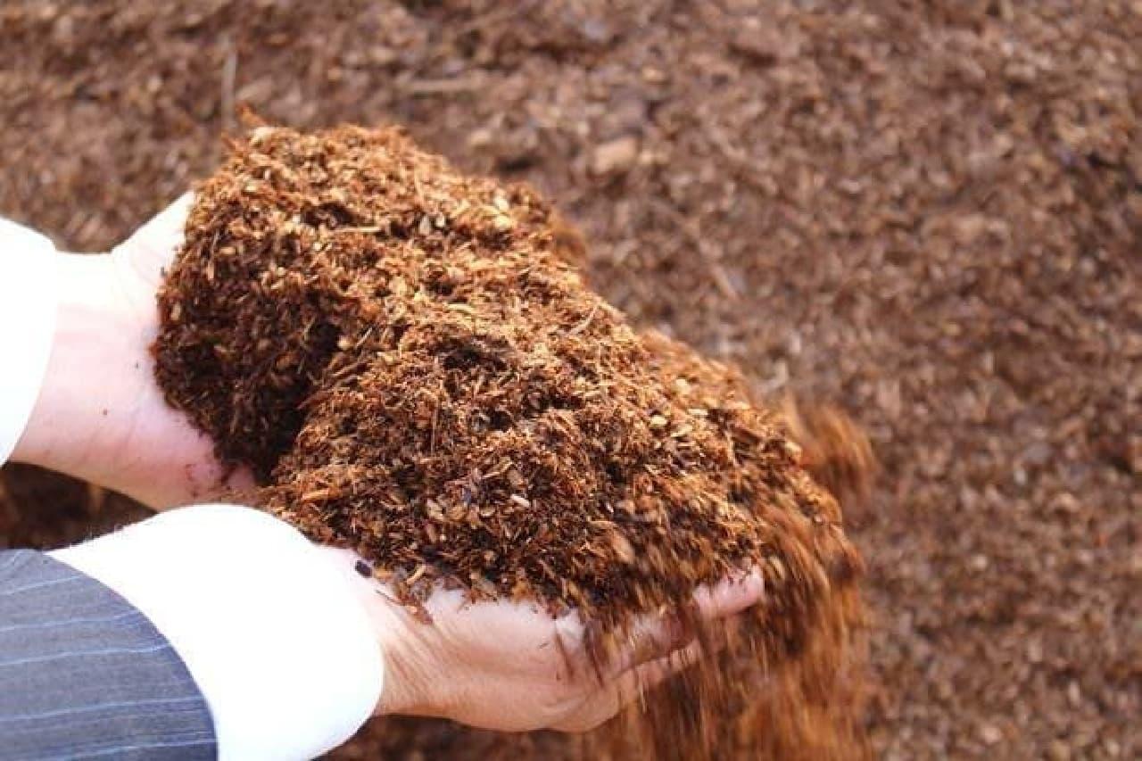 屋上を緑化してハチミツを集める「銀座ミツバチ」プロジェクトで利用されているそう  土よりも軽いため、ビルへの負担が少ないのだとか