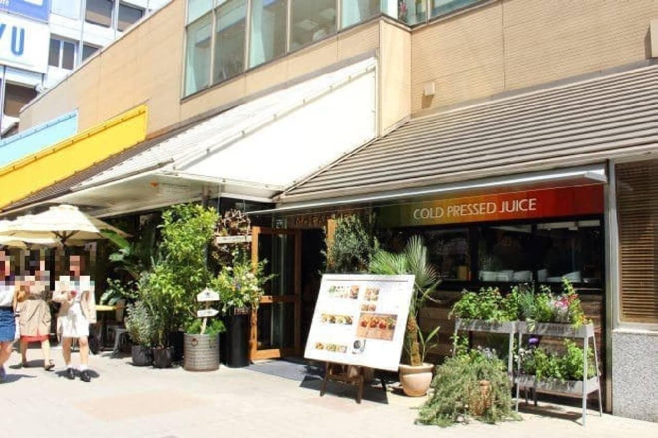 ▲新宿駅南口側から撮影 緑に囲まれたお店です