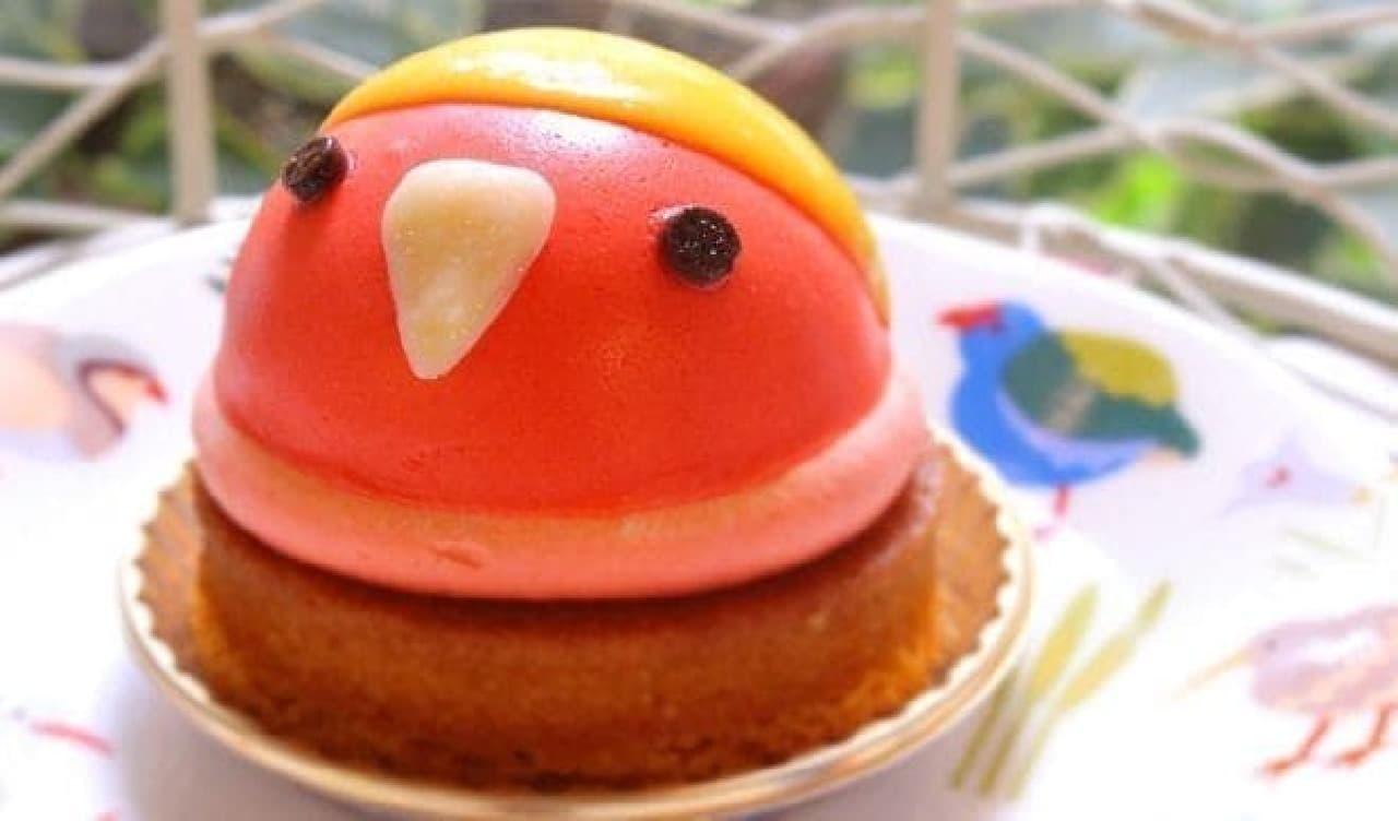コザクラインコゴールデンチェリーのケーキ