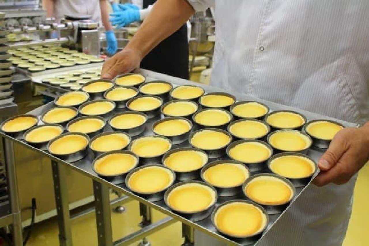 ローソン「ピュアチーズタルト」を製造している花畑牧場の工場にて、焼きたてのチーズタルト