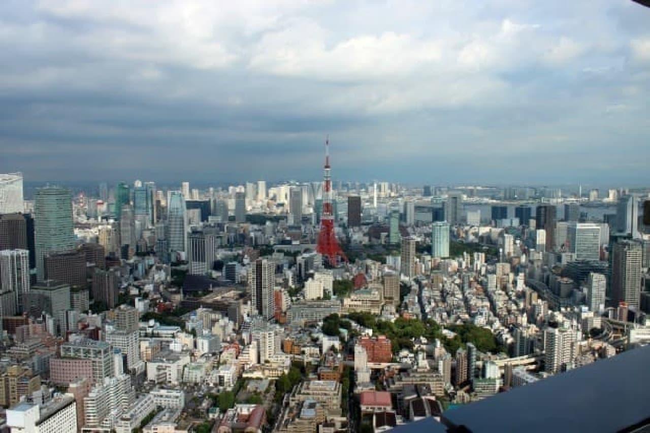 東京タワーの眺め