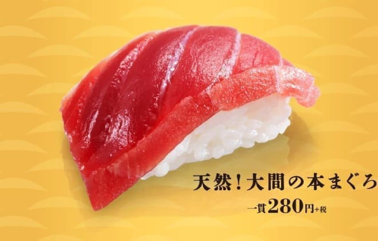 かっぱ寿司「天然!大間の本まぐろ」