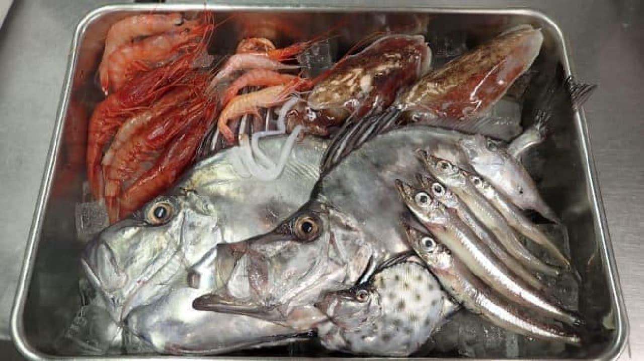 サンシャイン水族館 カナロア カフェ「深海汁」