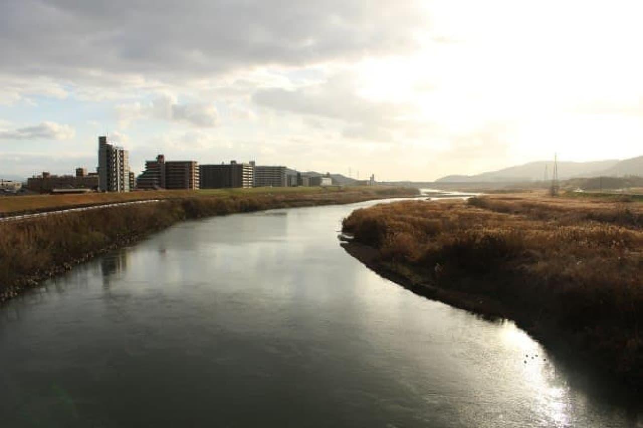 京都 桂川の景色
