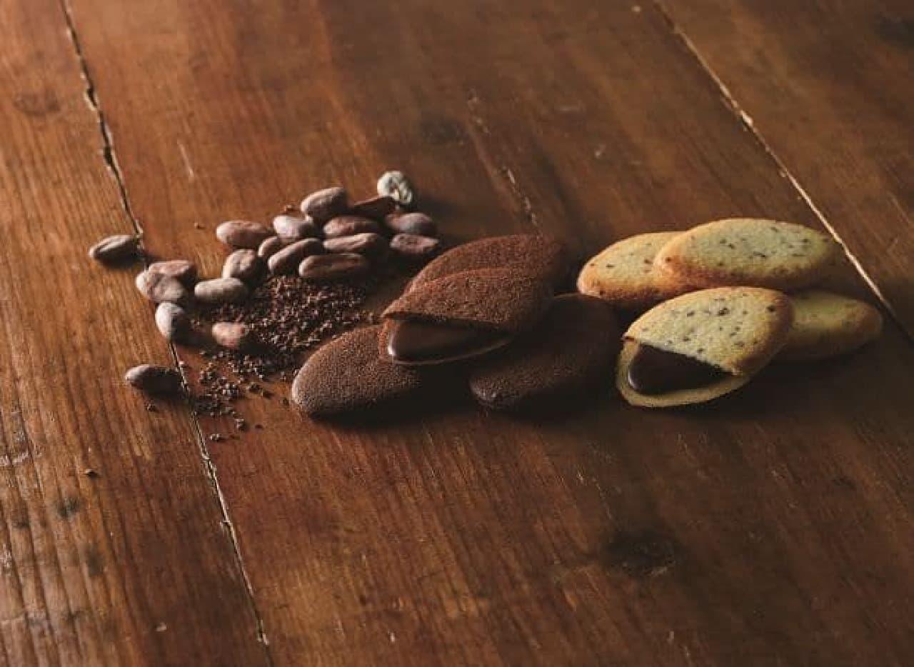 「カカオの実クッキー」は、なめらかなチョコクリームをカカオニブたっぷりのクッキー生地でサンドした焼き菓子