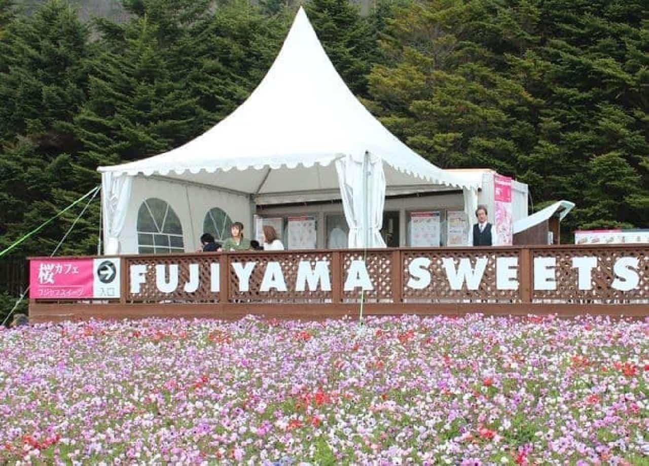 富士芝桜まつり会場内にはハイランドリゾート ホテル&スパの本格スイーツを楽しめるカフェ「桜カフェ FUZIYAMA SWEETS」