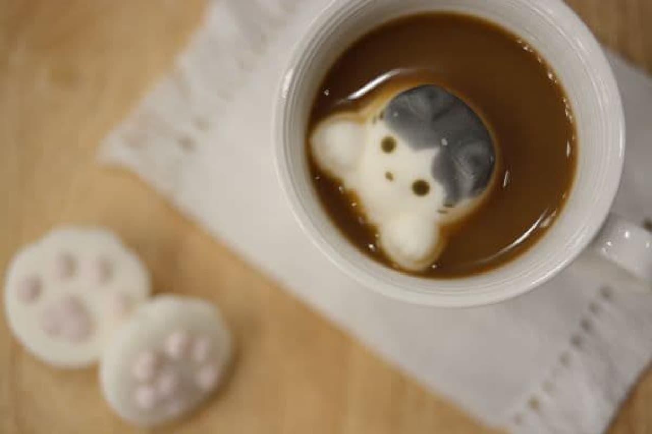モキャマロはマシュマロ専門店「やわはだ」と猫カフェ「猫カフェMoCHA」がコラボレーションしたマシュマロ