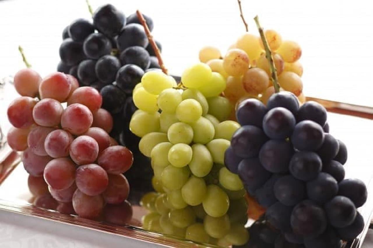 サロン・ド・カフェ「長野県 飯塚果樹園産 シャインマスカットと3種の葡萄パフェ」のぶどう