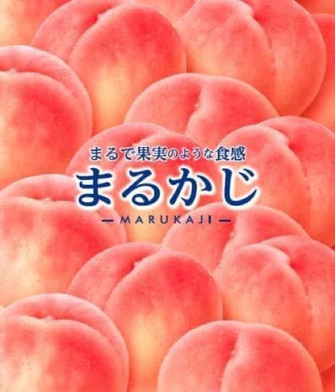森永乳業「サンキスト まるかじ 白桃バー」