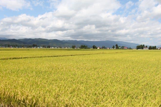 山形県南部にある飯豊町の田園