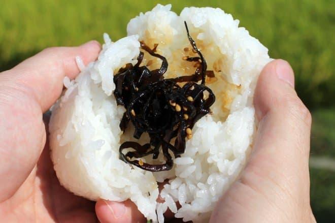 よろこんぶ米を使ったこんぶのおにぎり
