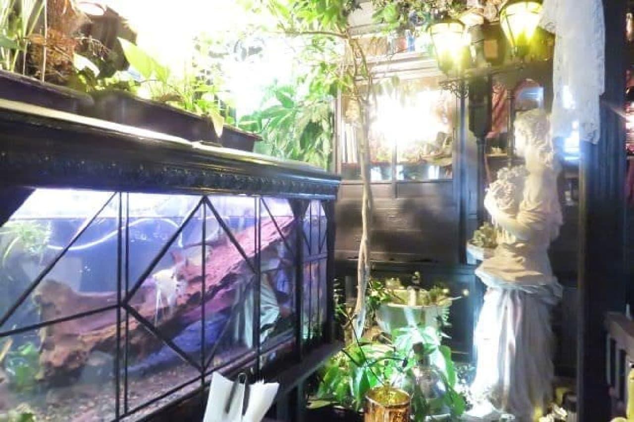 「アール座読書館」の上の階にある「エセルの中庭」