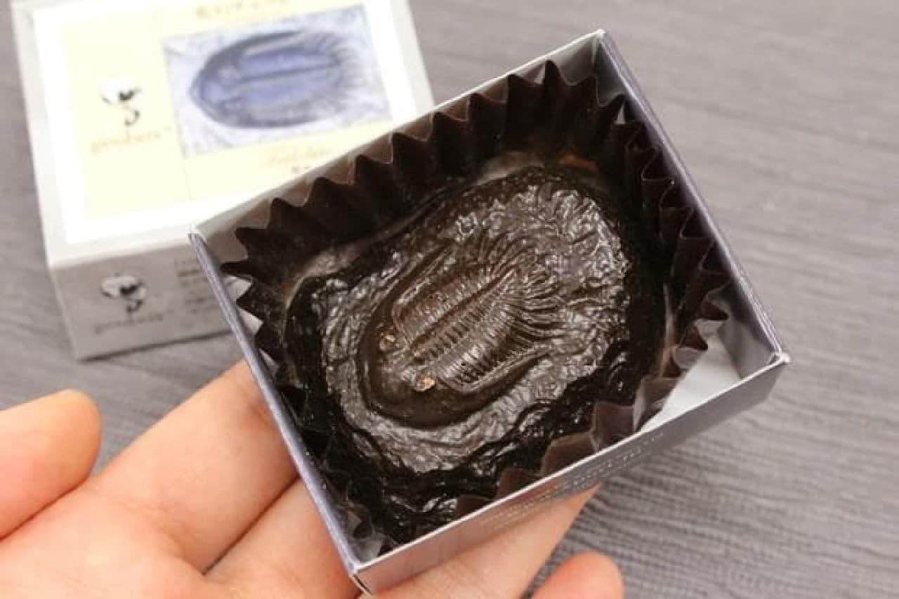 国立科学博物館化石チョコレート