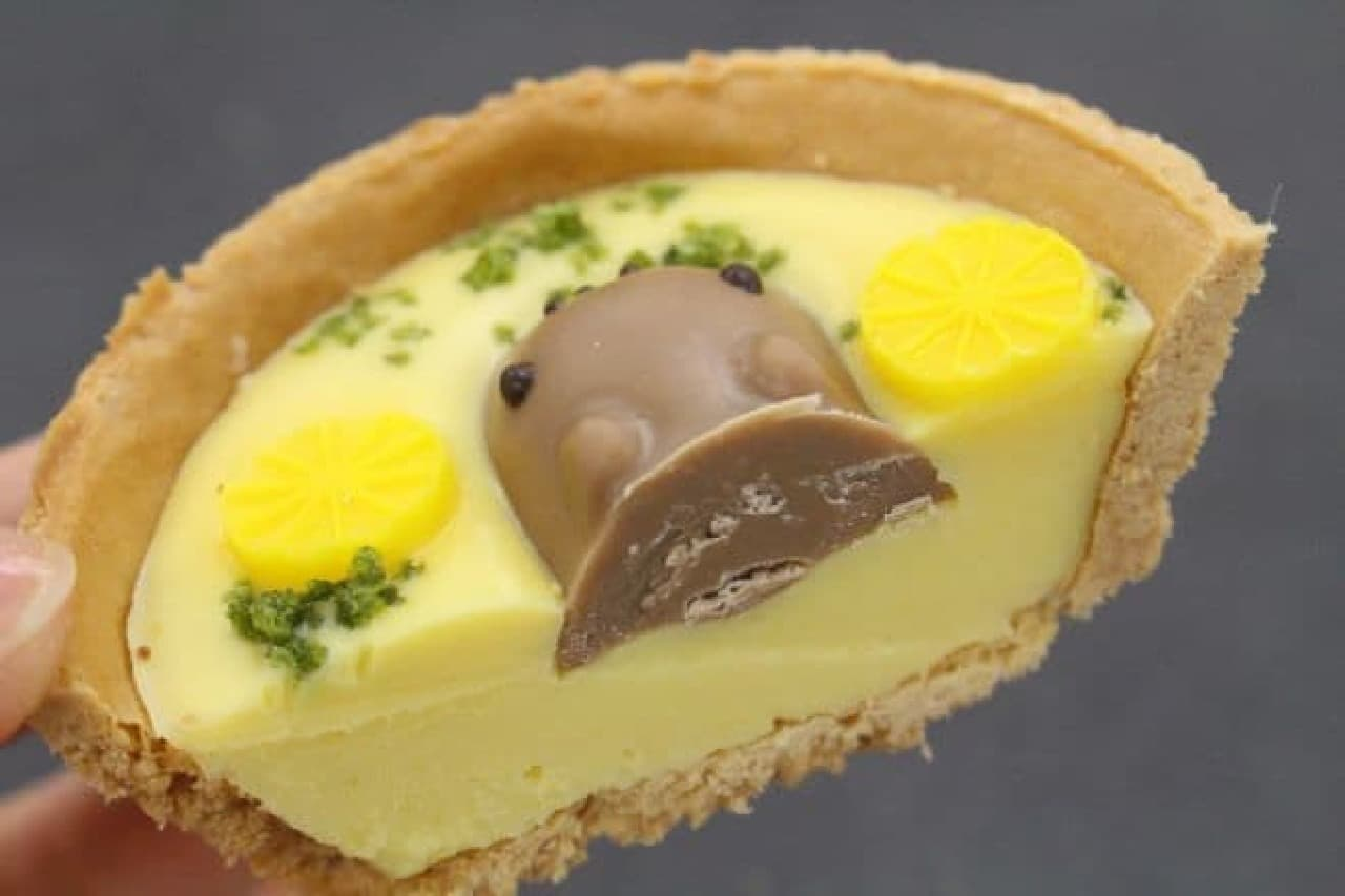 カピバラタルトはお風呂を模した柚子チョコ、ホワイトミルクチョコのカピバラ、抹茶顆粒と柚子型オーナメントが組み合わされた一品