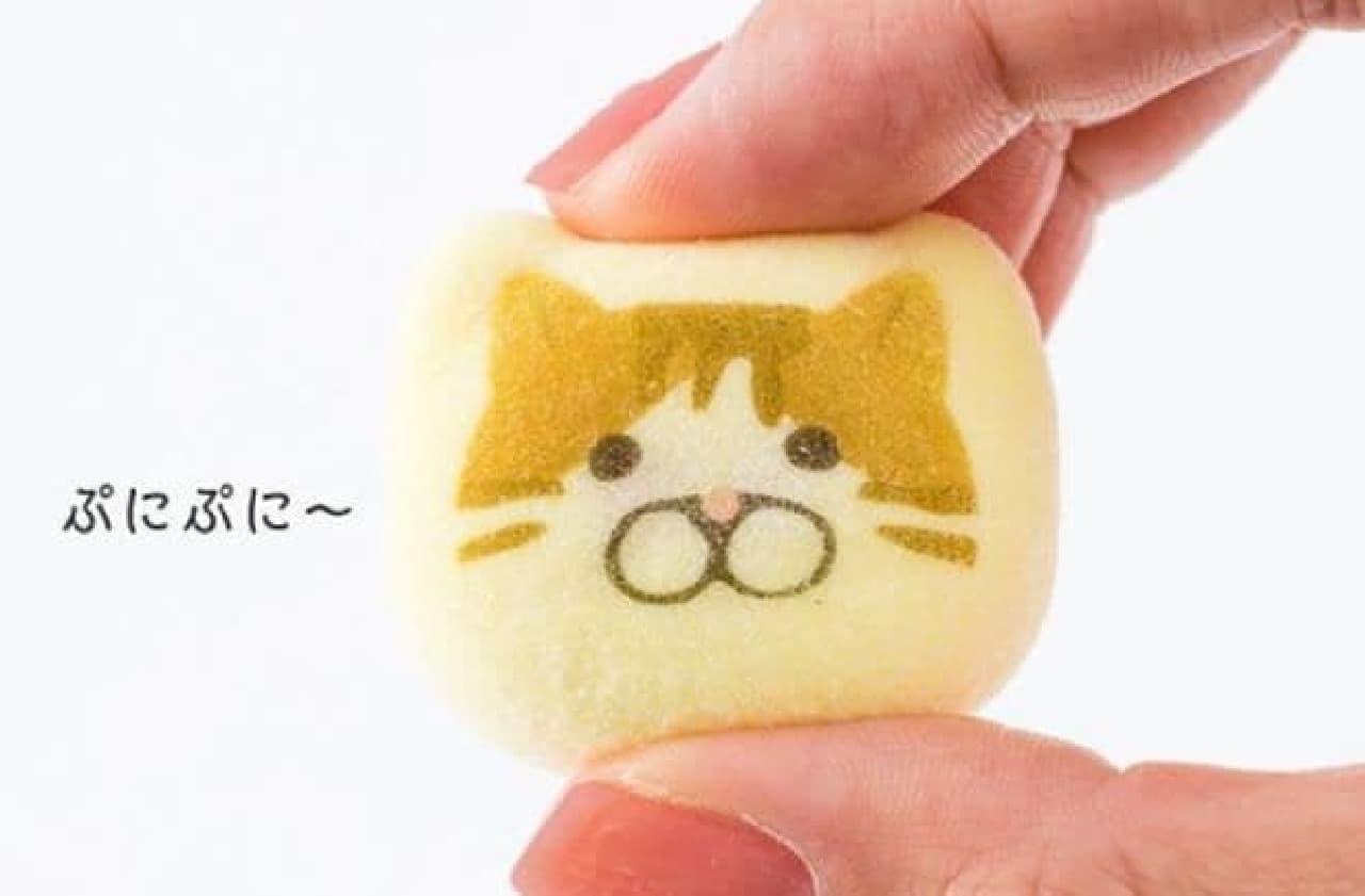 「【ねこ菓子】ほうずい」は、可愛いねこの顔がプリントされた鳳瑞(ほうずい)