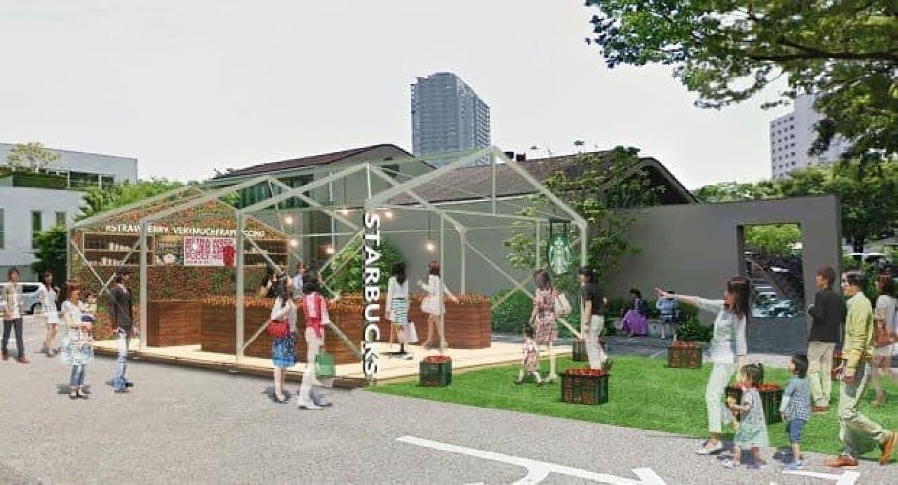 代官山 T-SITE内特設エリアに期間限定オープンする「スターバックス コーヒー イチゴビニールハウス店」