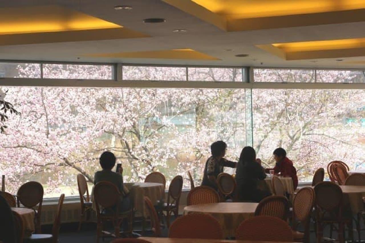 苗場プリンスホテル レストラン アゼリア