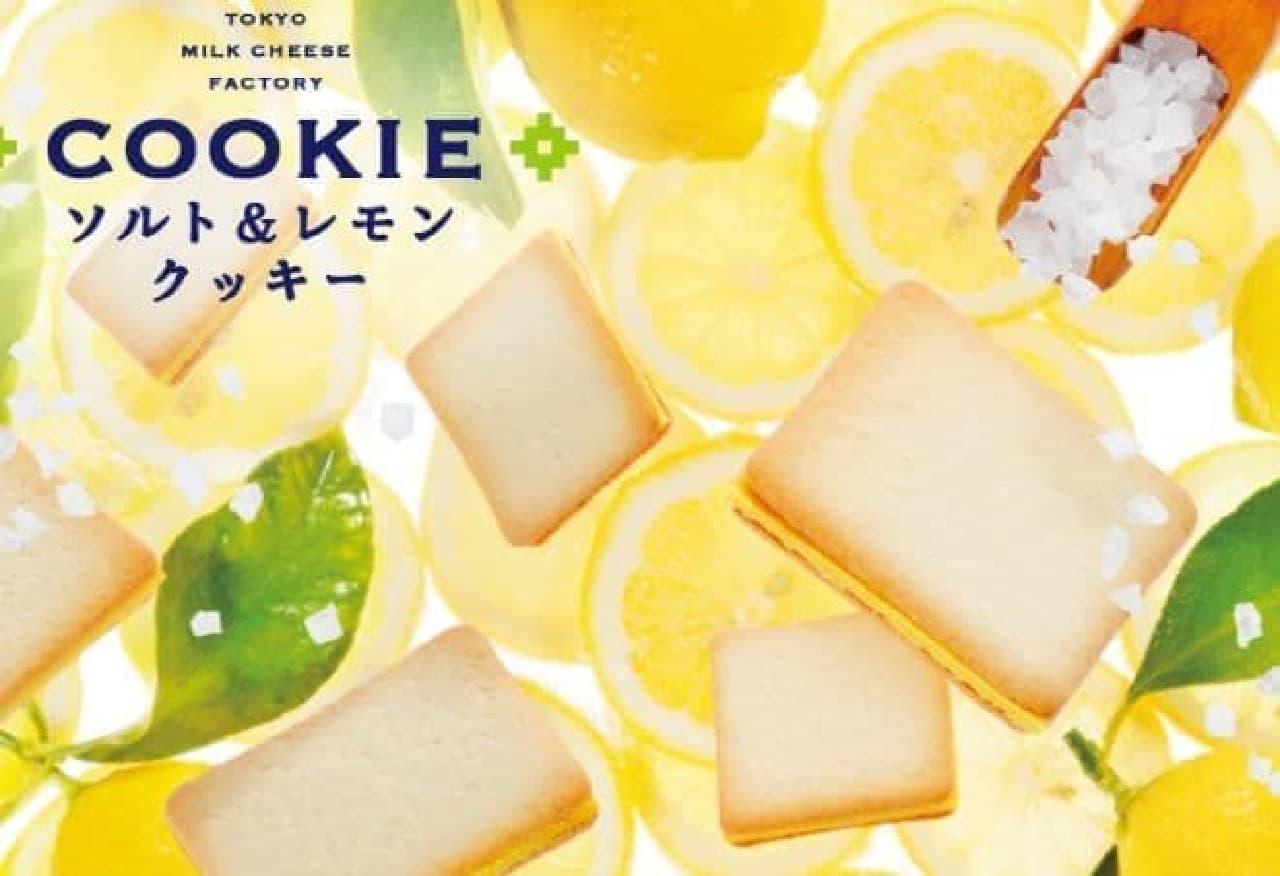 東京ミルクチーズ工場「ソルト&レモンクッキー」