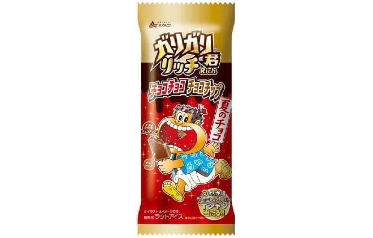 赤城乳業「ガリガリ君リッチチョコチョコチョコチップ」