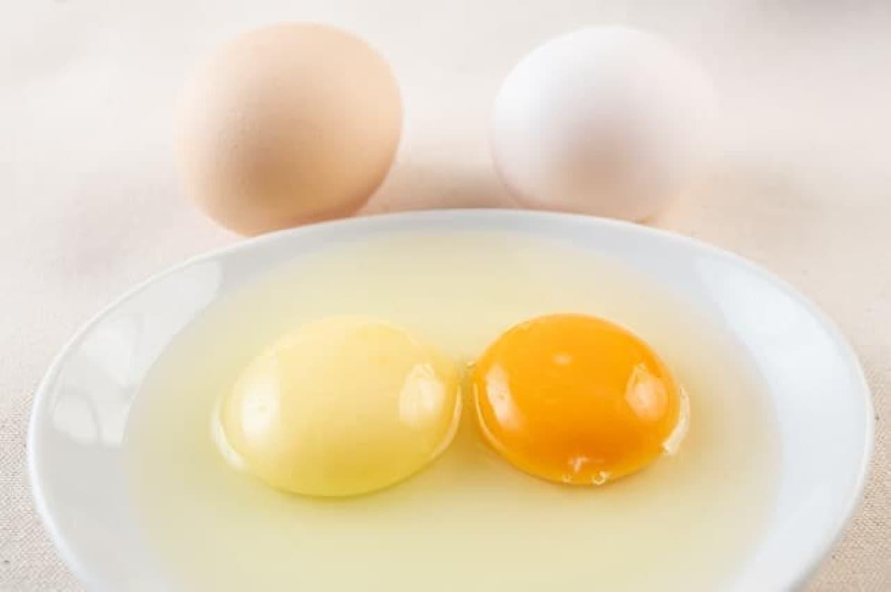 白たまごプリンの卵