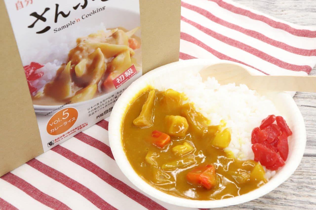 自宅で手軽に!「食品サンプルキット さんぷるん カレーライス」実際に ...