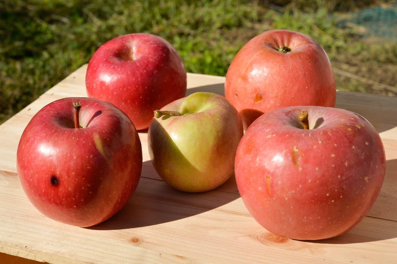 無印良品「不揃いりんご」