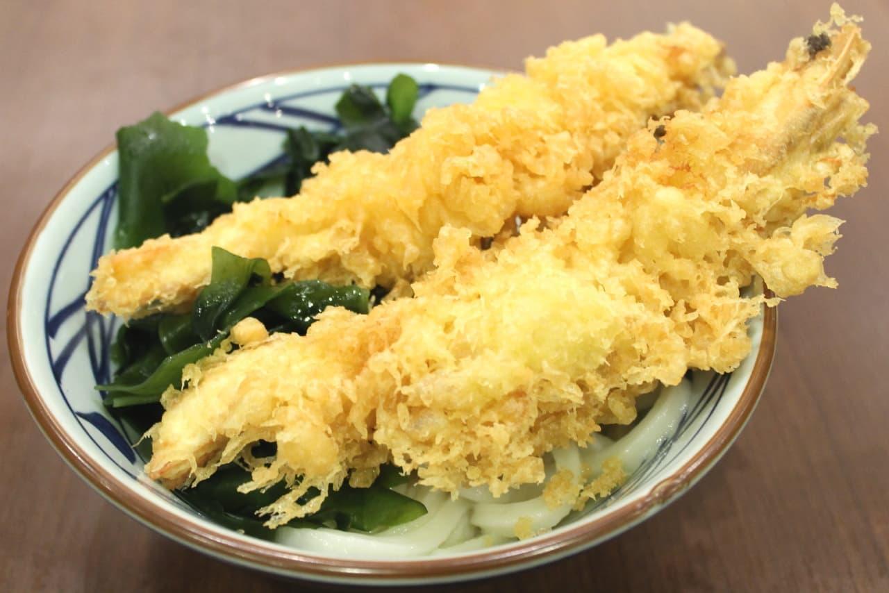 丸亀製麺で「寿 大海老うどん」