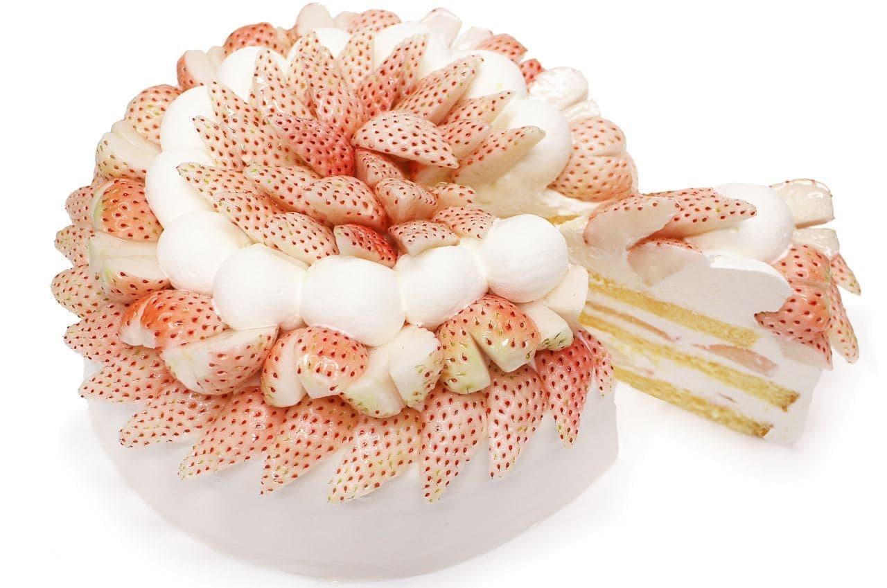 カフェコムサ「「白いちご」とホワイトチョコクリームのショートケーキ」