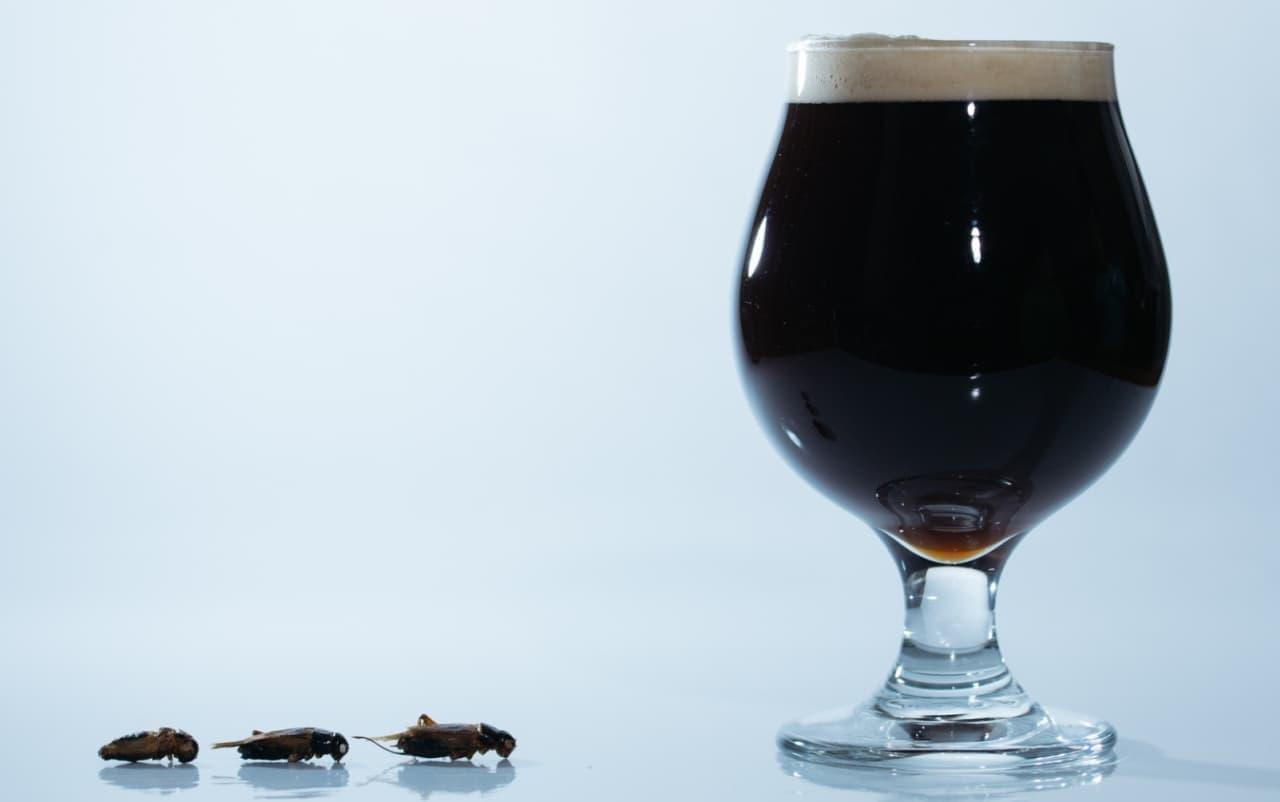 「コオロギビール/Cricket Dark Ale」期間限定で