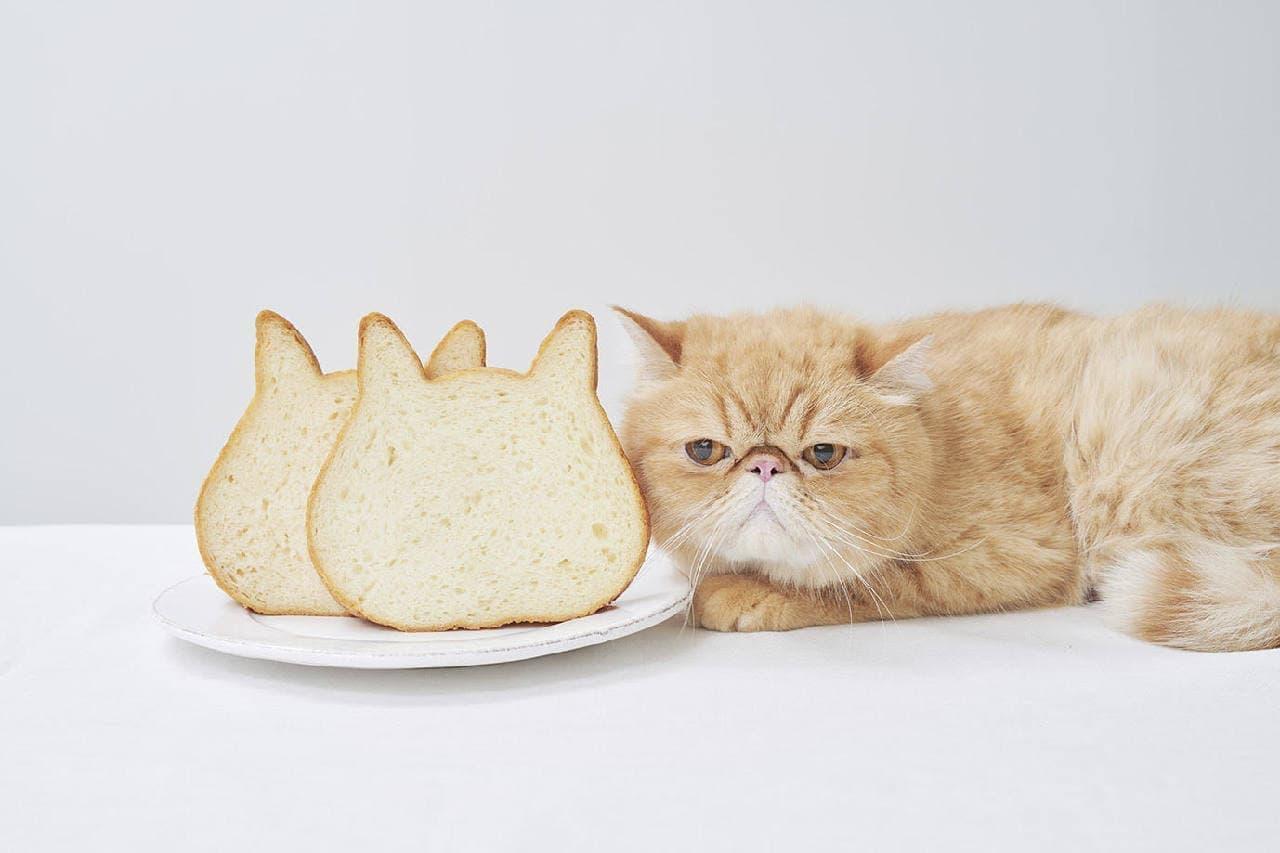 ねこねこ食パン表参道店