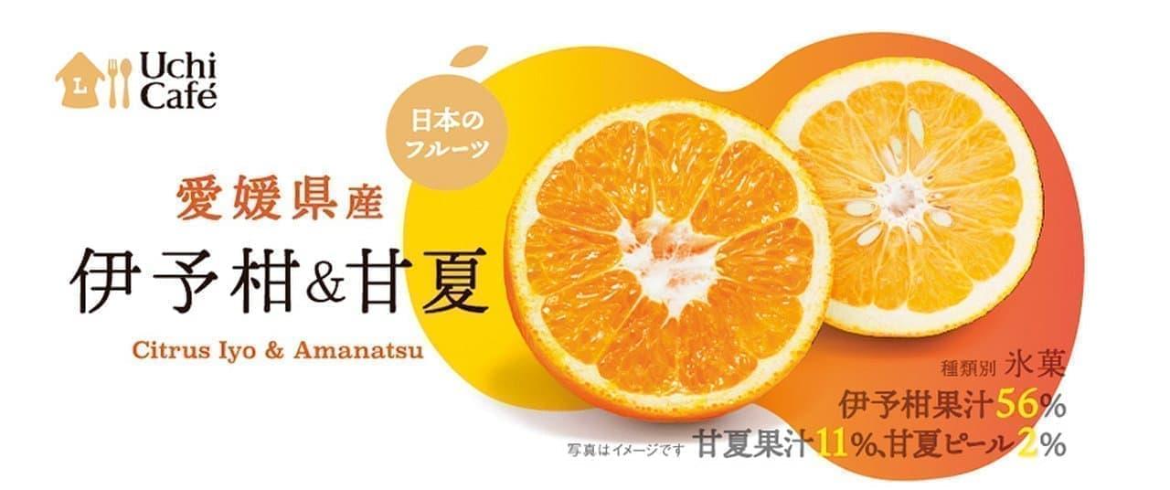 ローソン「ウチカフェ 日本のフルーツ 伊予柑&甘夏」