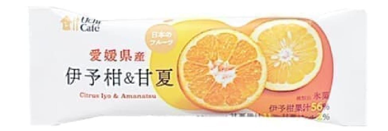 ローソン「ウチカフェ 日本のフルーツ 伊予柑&甘夏 80ml」