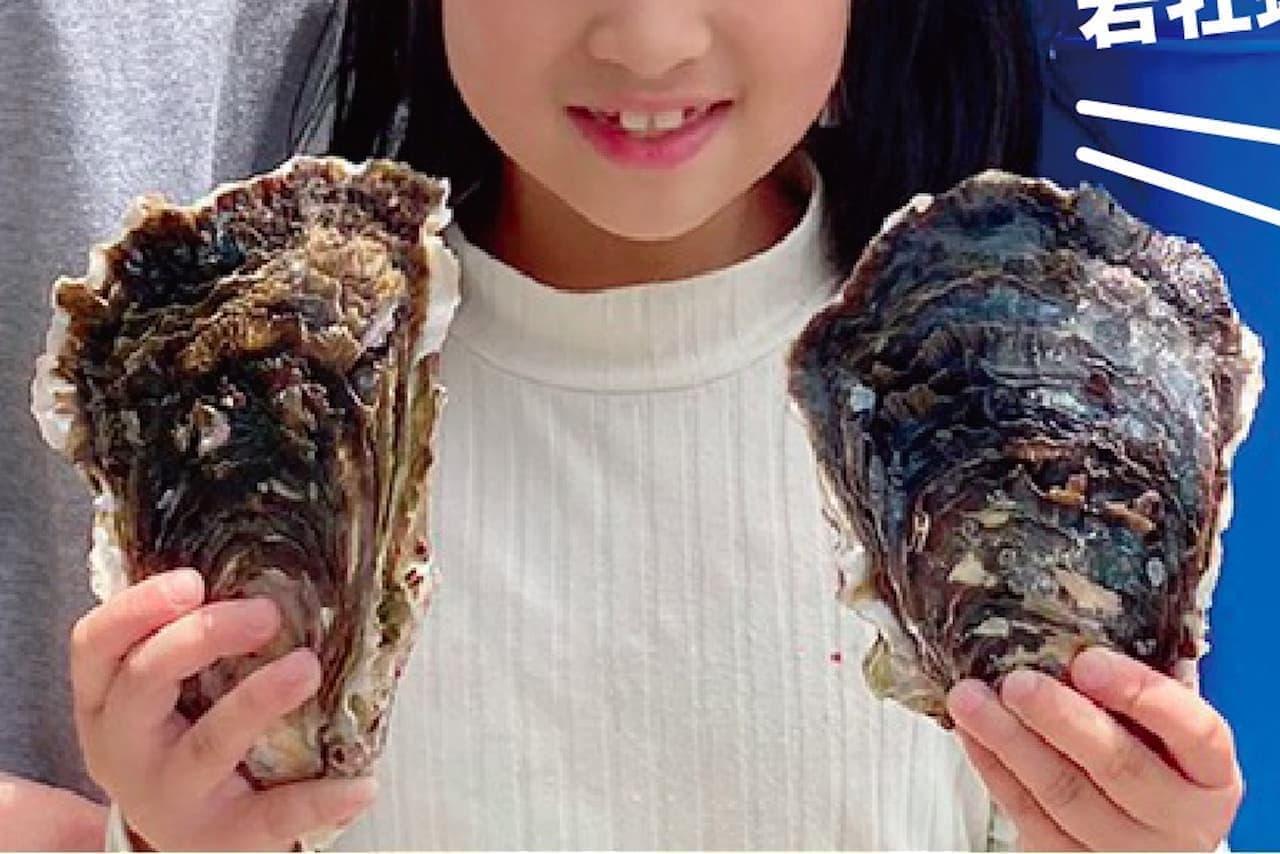 熊本県天草 福島剛士さんの「天草天領岩かき」