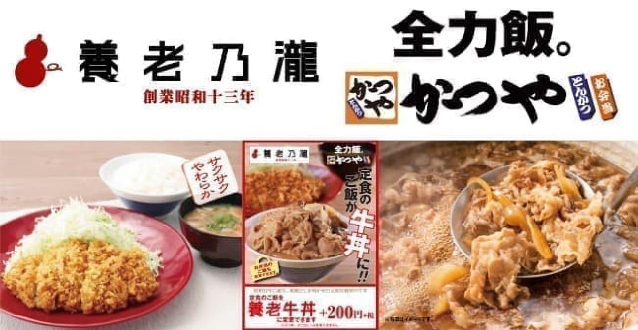 かつやで養老乃瀧の養老牛丼
