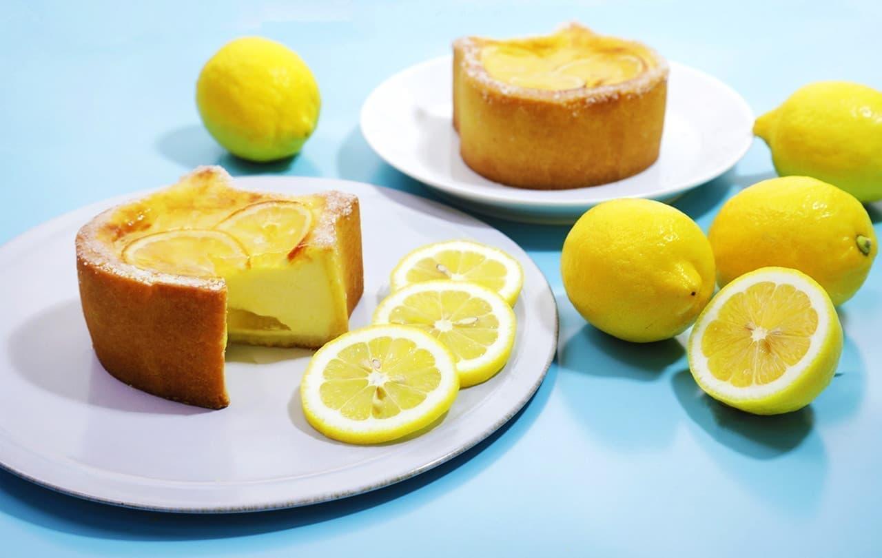 ねこねこチーズケーキ~瀬戸内レモン~