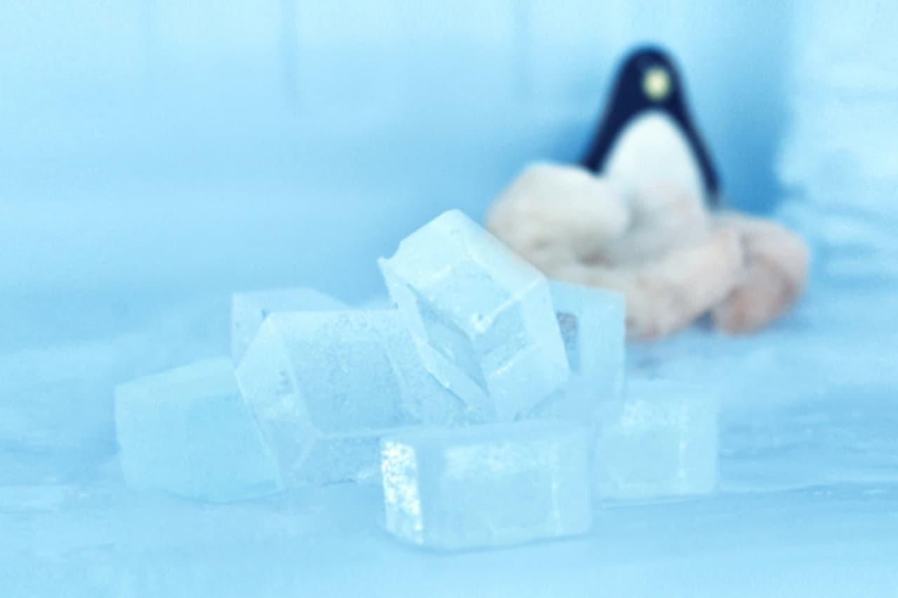 パパブブレの「氷キャンディ」