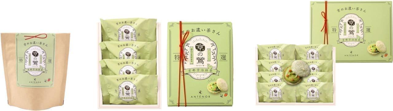 アンテノールに京都限定「京のお濃い茶さん」