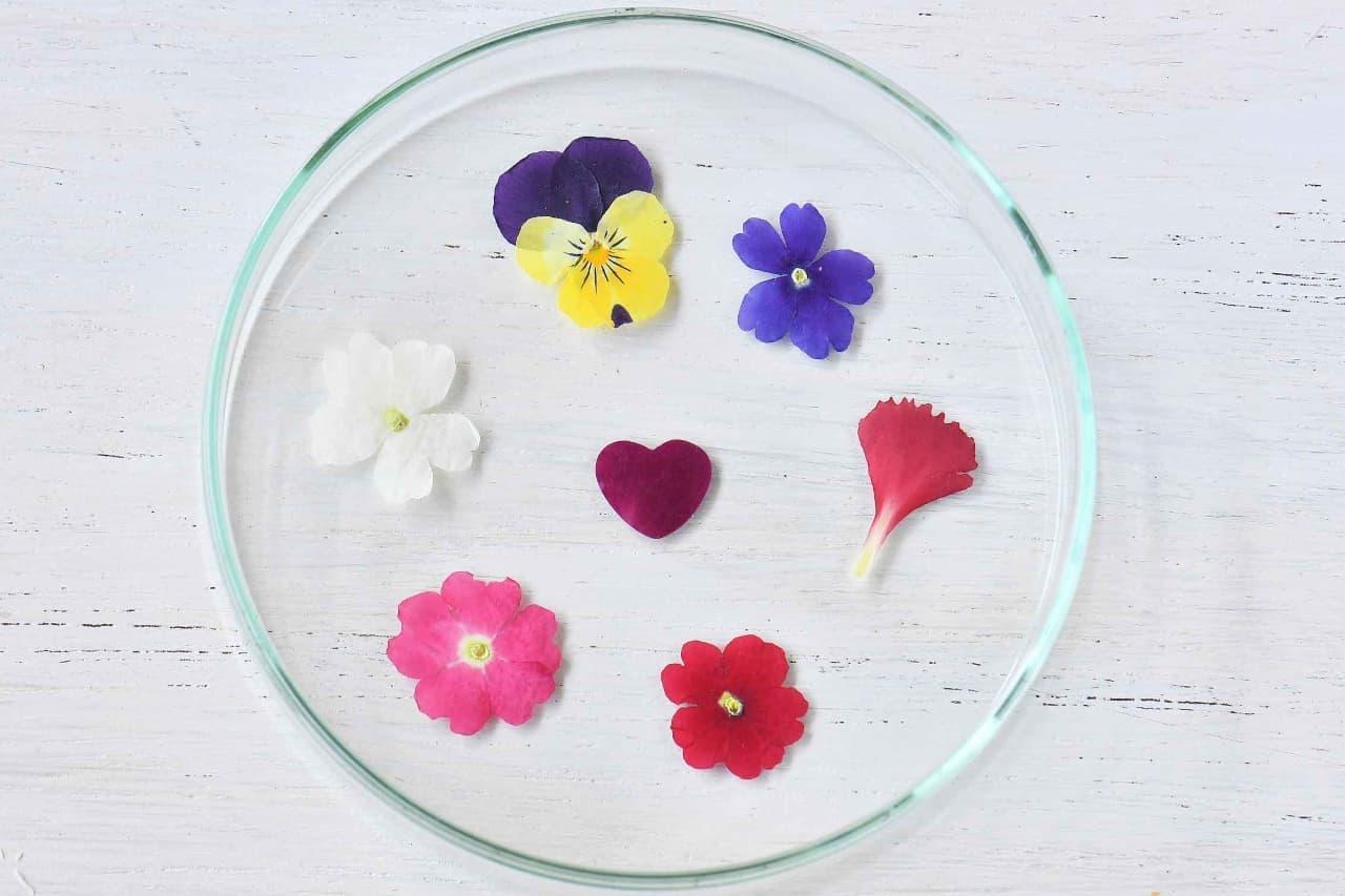 ヴィレヴァン通販サイトに「食べられる押し花」