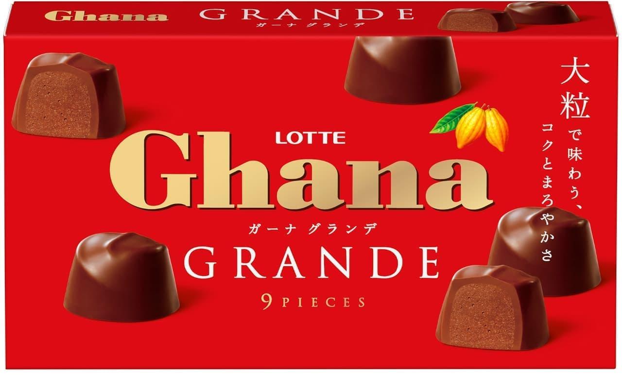 ロッテ「ガーナ」から大粒のショコラを1つずつ楽しむ「ガーナグランデ」