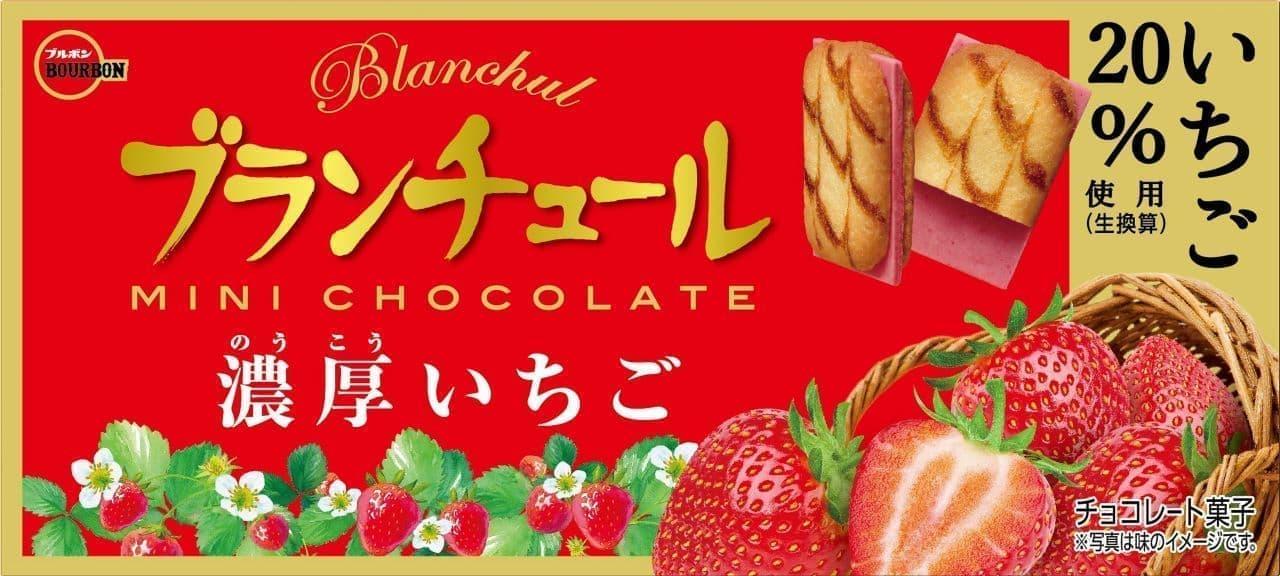 ブランチュールミニチョコレート濃厚いちご
