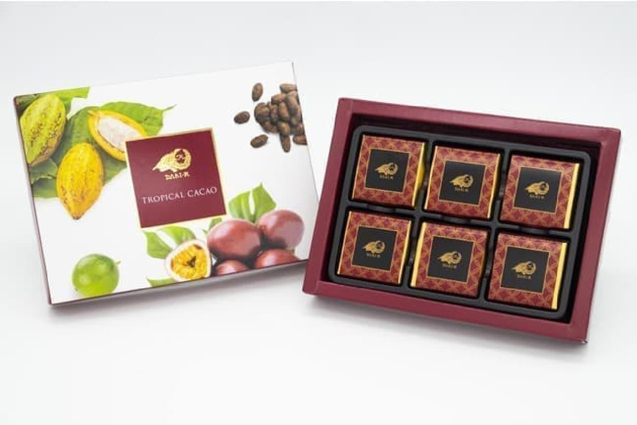 セブン-イレブン「Dari K」の「トロピカルカカオ」チョコレート(6枚入)