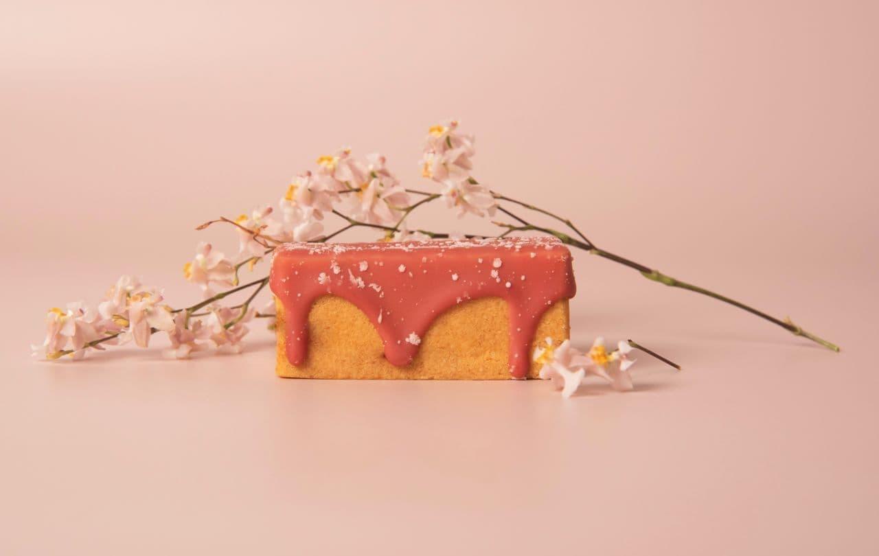 サニーヒルズ「いちごりんごケーキ」