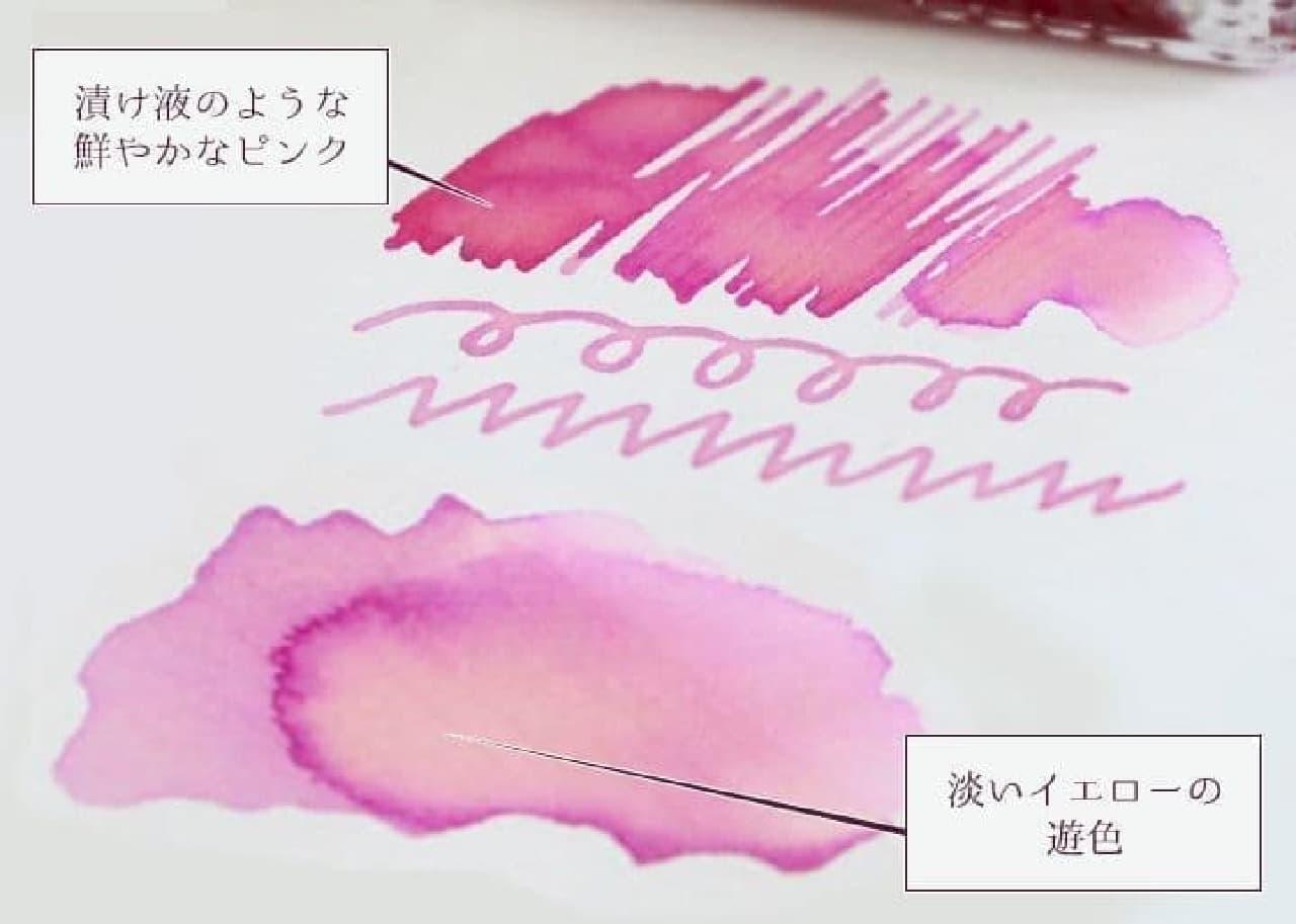 岩下食品×石丸文行堂「岩下の新生姜万年筆インク」