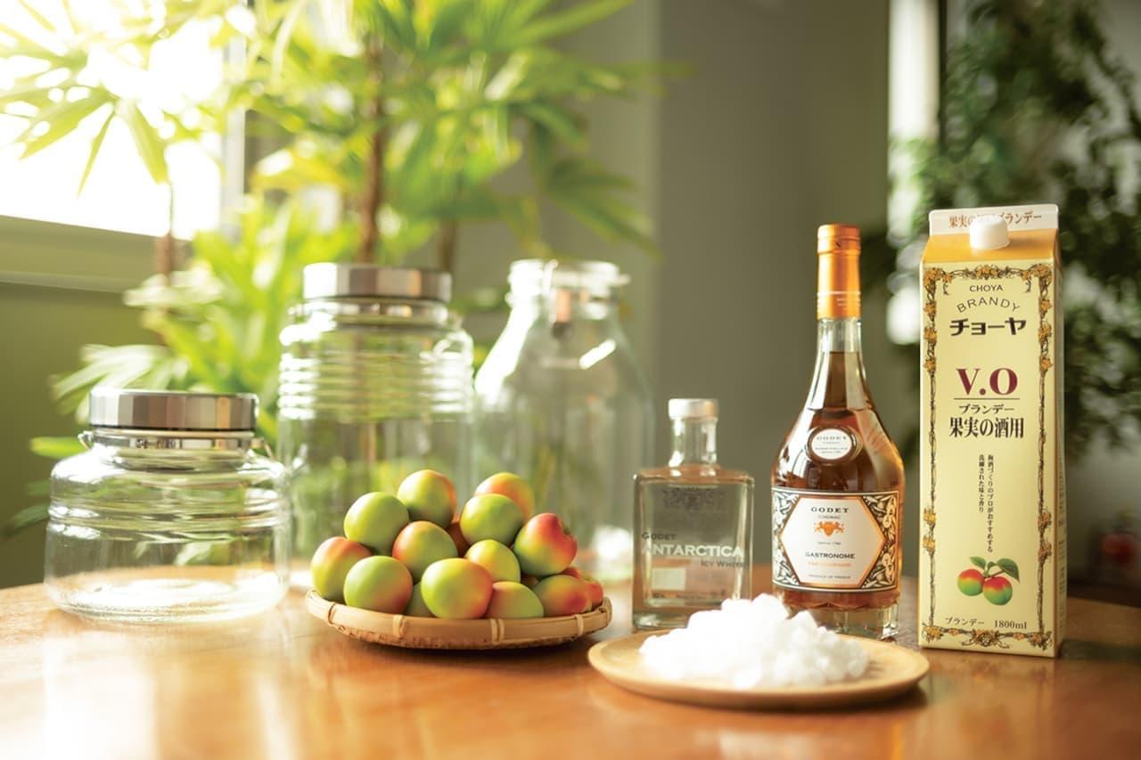 チョーヤ おうちで 手作り梅しごとキット2021